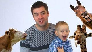 Развитие речи у детей Речь ребенка дошкольника Папа и сын Секреты воспитания