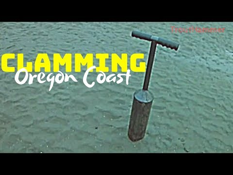 Clamming the Oregon Coast - My First Clams