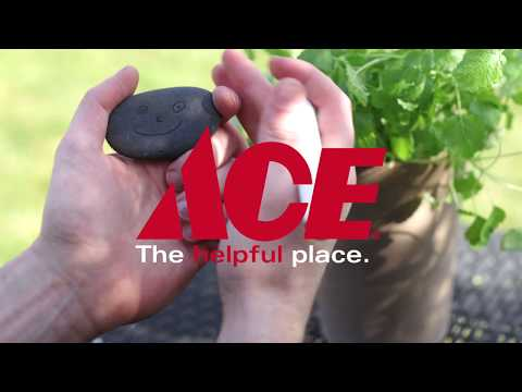 Fix It With Ace - Ace Hardware