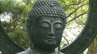 The End of Suffering Thich Nhat Hahn