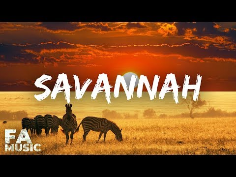 Diviners ft. Philly K - Savannah