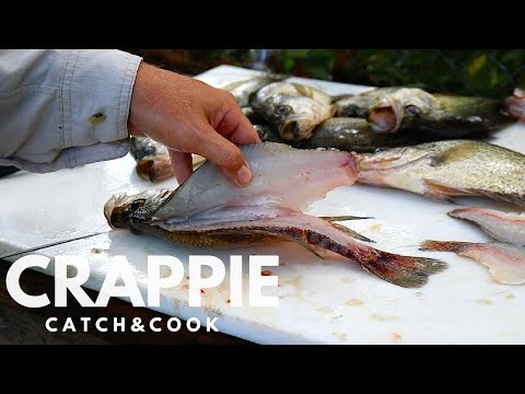 How to CATCH CLEAN and COOK CRAPPIE!!