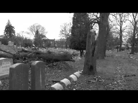 One Foot in the Grave (Pernice Brothers cover)