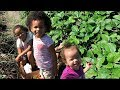 Berry Picking with 3 Little Girls!| Going Natural?!