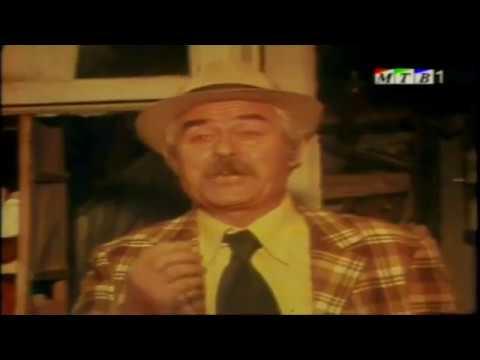 Makedonski film   Zlatni godini 1978