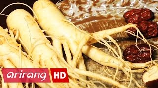 Arirang Special(Ep.360) The Ginseng Documentary _ Full Episode