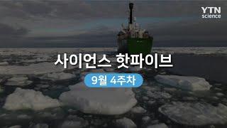 [사이언스 핫파이브] 북극 해빙 역대 두번 째로 작아……