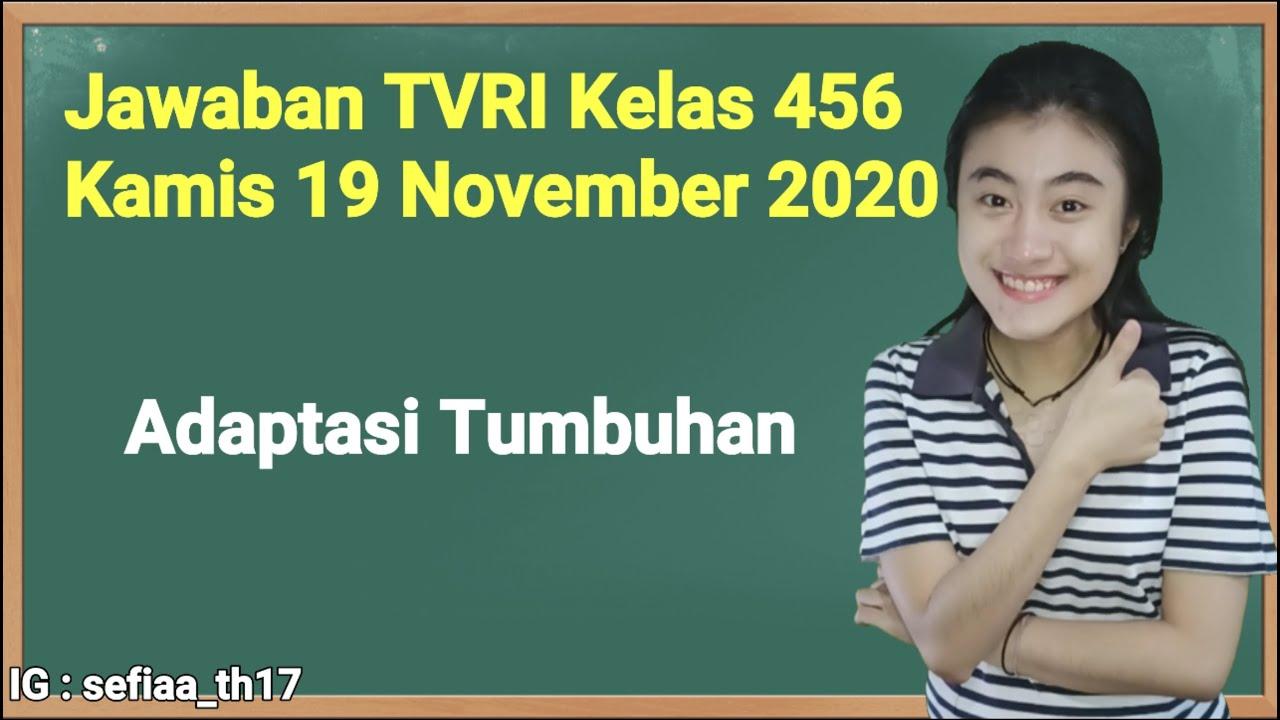 Kunci Jawaban TVRI Kelas 4-5-6 SD Kamis 19 November…