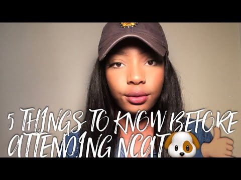 5 things to know before attending NCAT