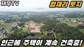 제주도 토지 매매 협재 해수욕장 인근에 위치한 투자용,건축용 토지 매물입니다~제주도 부동산 매물,Jeju House for sale,Korea,제주도부동산TV