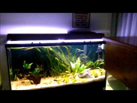 How to: Easy DIY Sliding Glass Aquarium Top/Hood