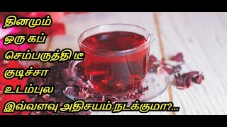 Benefits Of Hibiscus Tea in Tamil | Sembaruthi | Shoe flower | Healthy Life - Tamil.