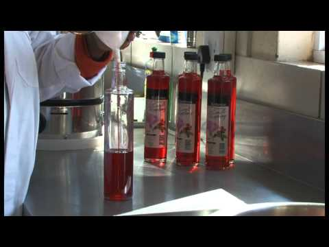 Kuhestan Organic Farm - South Africa Travel Channel 24