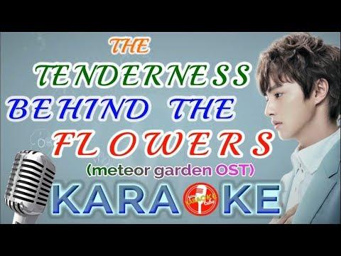 "KARAOKE ""The Tenderness Behind The Flowers"" - Darren Chen (Meteor Garden 2018 OST)"