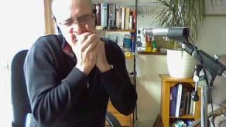 vuclip Big Walter - JJ Milteau Harmonica Blues - Cover