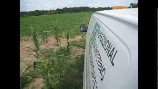 Driving Through a Corn Field