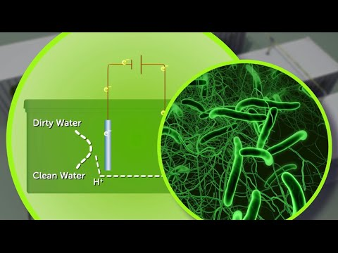 EcoVolt generates energy from wastewater - Science Nation