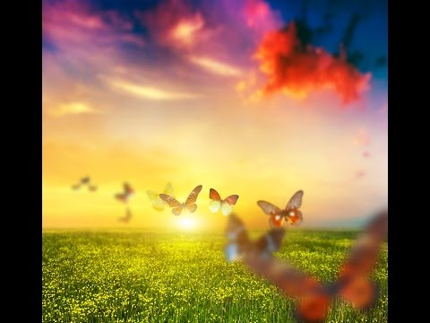 InnerPeace Music For Children ♫♫ Relaxation | Quiet Time | Time off ♫ Stress Relief ♫ Sleepy Sounds