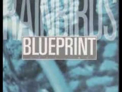 Rainbirds - Blueprint (lyrics on clip)