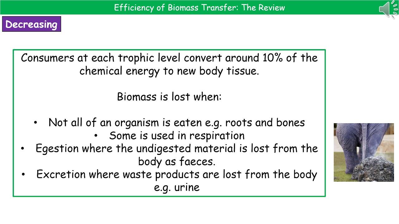OCR Gateway A B4 1 5 - Efficiency of Biomass Transfer
