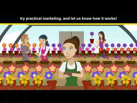 Practical Marketing -- A Five-Step Marketing Program for Small Biz with YP