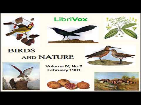 Birds and Nature, Vol. IX, No 2, February 1901 | Various | Nature | Audio Book | English | 1/2