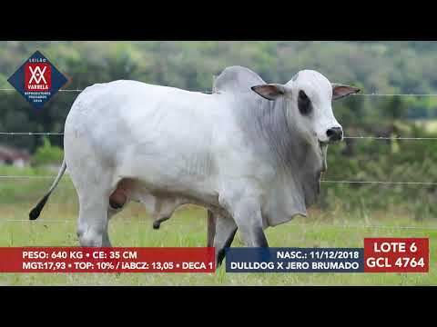 LOTE 6 GCL 4764