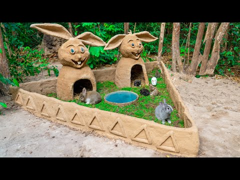 Building Beautiful Rabbit House Shelter For Rescue Newborn Rabbit