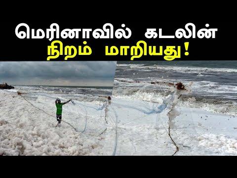 மெரினா கடலில் ஏற்பட்ட திடீர் மாற்றம் | Foam in Chennai Marina beach
