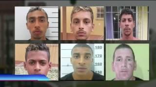 Baixar Operação no Novo Horizonte, em Florianópolis, prende 19 pessoas ligadas ao tráfico