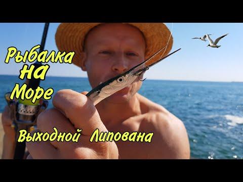ОДЕССА ЛЕТО 2020 ЧЁРНОЕ МОРЕ СОВИНЬОН РЫБАЛКА клюёт сарган ловит Одесский Липован