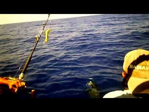 Ahi Fishing Waianae Hawaii