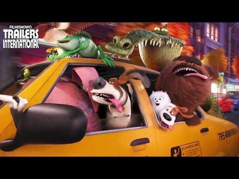 Trailer do filme A Vida Secreta dos Dentistas