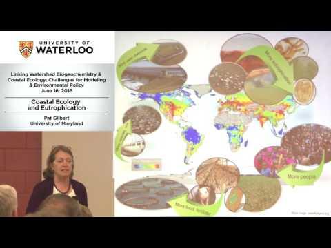 Pat Glibert: Coastal Ecology and Eutrophication