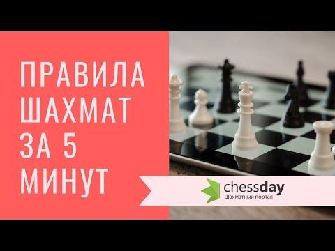 Основные правила шахмат за 5 минут! Видео для начинающих.