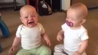 VUI HÀI: Bé sinh đôi giành ti khi không có mẹ
