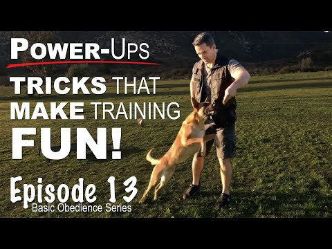 Dog Training Power-ups. Tricks That Make Training FUN! Episode 13
