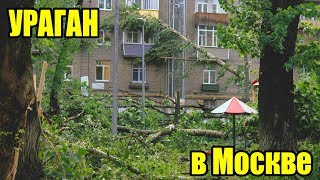 Ураган в Москве. Что хочет сказать нам природа?