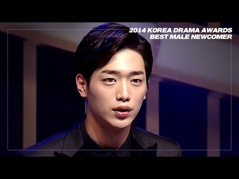 Arirang Special(Ep.255) - 2014 Korea Drama Awards part 1