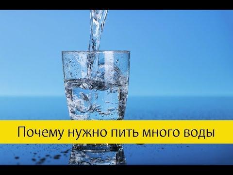 Вода - польза для организма| Фитнес-идеи на каждый день
