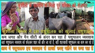 सुशीला किन्नर ने इस पशुपालक का किया पूरा सहयोग, Sushila has done full support of this cattleman