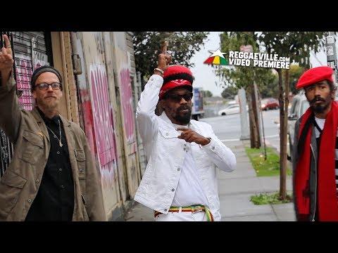 Rocker-T feat. Mykal Rose & Mrmz - Disgrace [Official Video 2017]