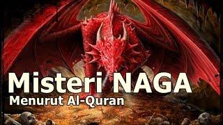 muslim wajib tau ini yang islam katakan tentang misteri keberadaan naga