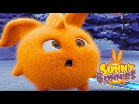 Sunny Bunnies - FUNNY BUNNY | Cartoons For Children | Sunny Bunnies 2018 | Funny Cartoon