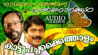 New Malayalam Album Songs | Kattupachakkaithalam | Love Songs | Ft. G.Venugopal