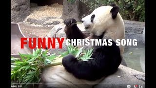 FUNNY Animals Sing, We Wish You A Merry Christmas Song - lyrics