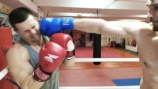 Бой Шреддер против огромного Боксера 110 кг! Проверка на прочность