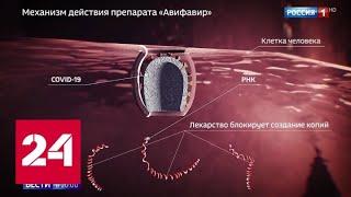 В России выпущен первый и самый мощный препарат от COVID-19 - Россия 24