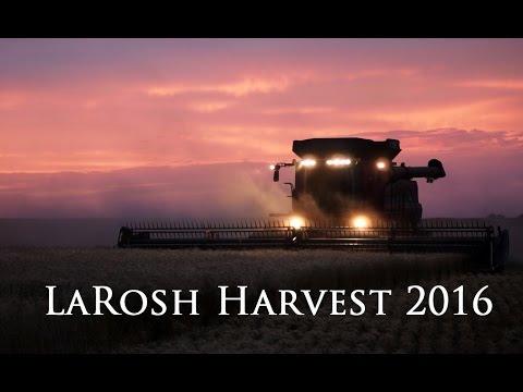 LaRosh Wheat Harvest 2016