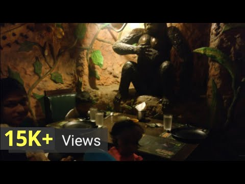 Animal kingdom Adyar | Buffet Restaurant Chennai